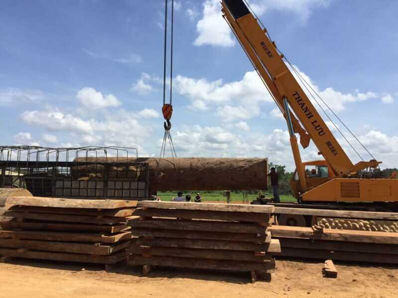 Xuất nhập khẩu gỗ ở Việt Nam vào những ngày cuối năm…