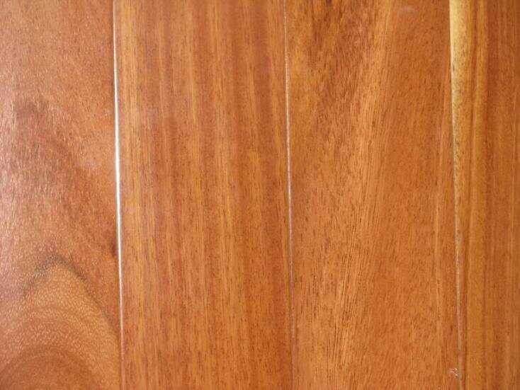 Thế nào là gỗ Gõ đỏ?